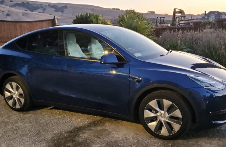Tesla launches low-priced Model Y Musk called inadmissible as Ford, VW enter the section